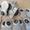 Передняя крышка 66-02-4207084-10 на КОМ под лебедку а/м Газ-66. - Изображение #6, Объявление #1079461